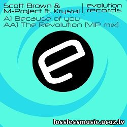 Scott Brown & M-Project – The Revolution (VIP Mix). FLAC, 2019 - cover